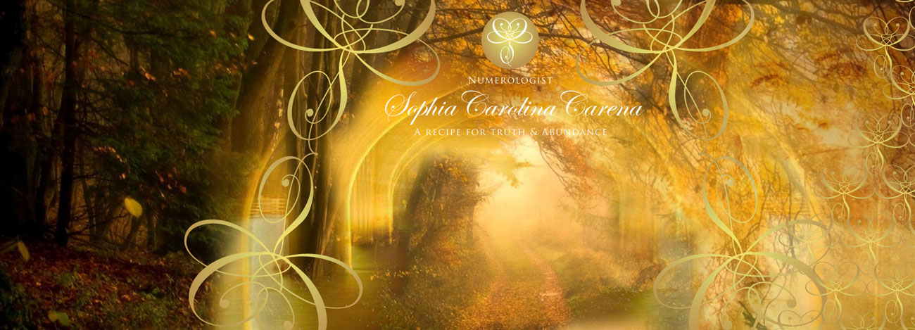 Sophia Carolina Carena Logo